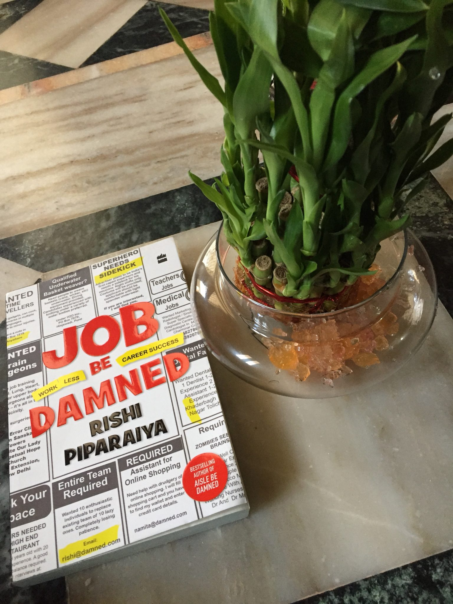 Job Be Damned by Rishi Piparaiya