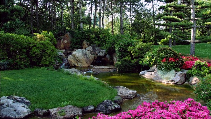 beautiful garden-landscaping