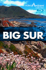 BIG SUR - Download Nature Video