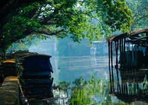 Alleppey - The Venetian Capital of India 4