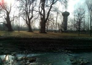 Char Chinar Garden in Srinagar