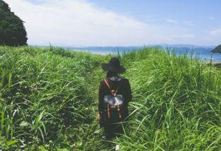 traveller on a grassland