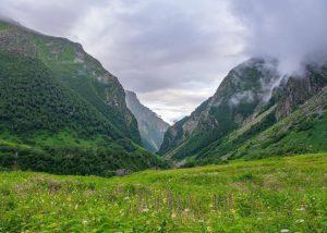 National Parks and Wildlife Sanctuaries in Uttarakhand 5