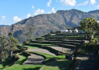 Sainji-The Corn Village, Uttarakhand 3
