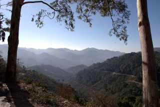 Kasauli Travel Guide 2020, How To Reach, Places To Visit & Much More! 3