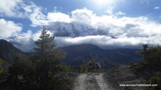 Wahoo! Finally some big mountains - Gangapurna peaks out past Ngwal
