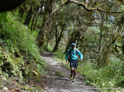 As we dropped in altitude - we started running through incredible forests