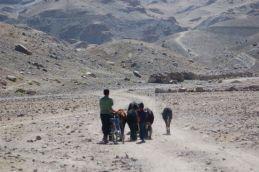 ladakh aug 09 248