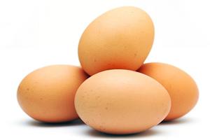 egg-nw