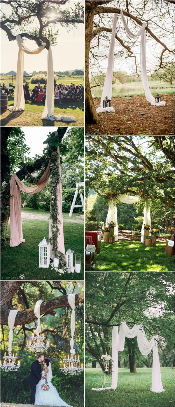 Outdoor Budget Friendly Tree Wedding Backdrops and Arches
