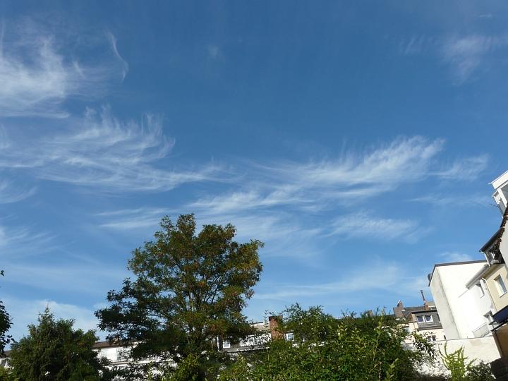 Zirren über der Bonner Südstadt (12.08.2012, 18:27 MESZ)