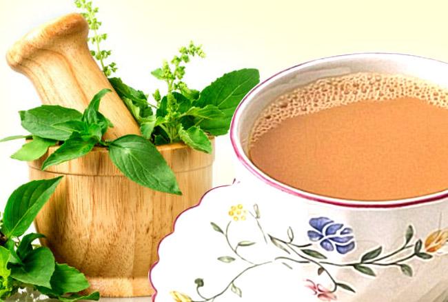 तुलसी की चाय पीने के फायदे और नुकसान