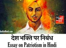 hindiinhindi Essay on Patriotism in Hindi