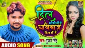 Dil Mein Dhokha Hai (Gunjan Singh) Lyrics