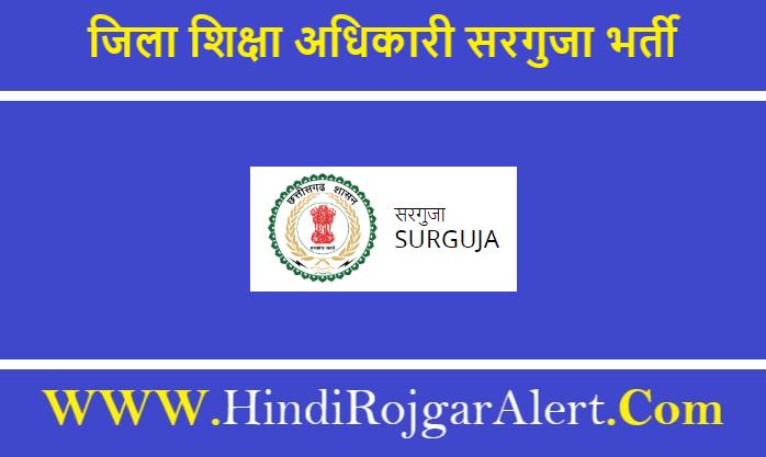 Deo Surguja Bharti 2020 शासकीय उत्कृष्ट अंग्रेजी माध्यम विद्यालय जिला सरगुजा भर्ती 2020
