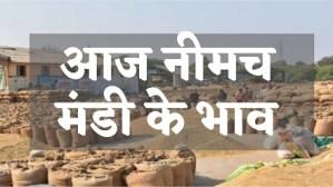 Neemuch Mandi Bhav Today Rate