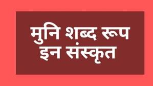 Shabd Roop of Muni in Sanskrit