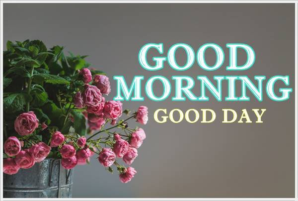 Good Morning Photo HD Cute Baby Wallpaper For Facebook
