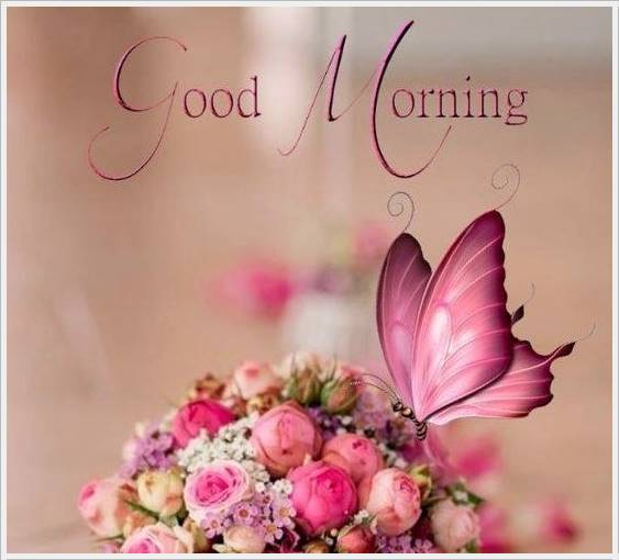 good morning photo hd 26