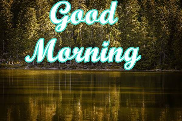 Good Morning Nature Images Photos HD 14
