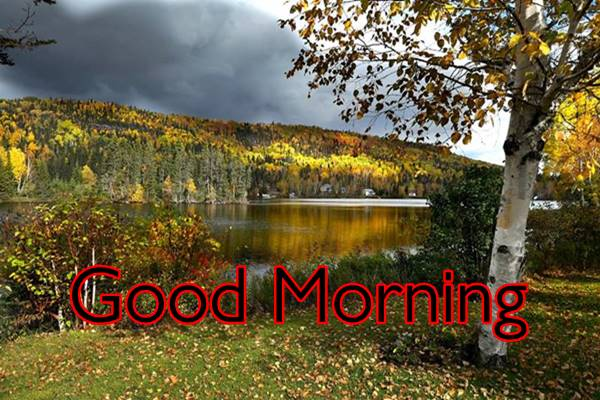 Good Morning Nature Images Photos HD 40
