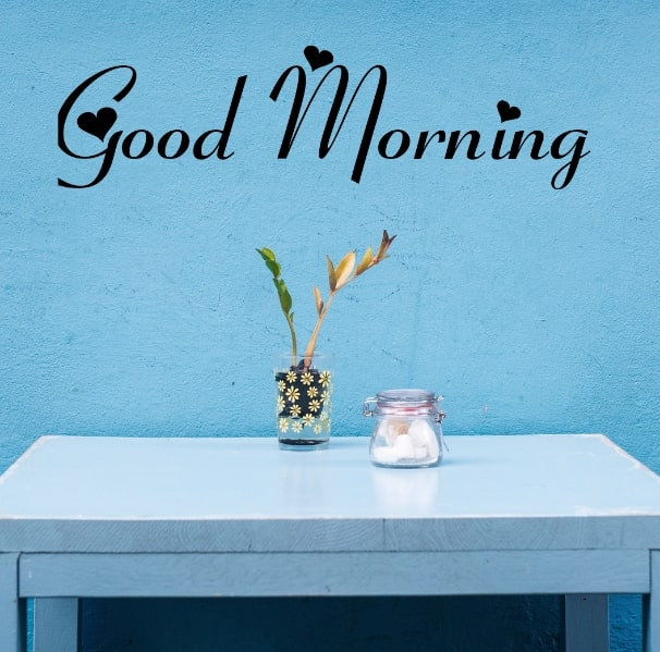 Best Good Morning Images HD Free Download 103