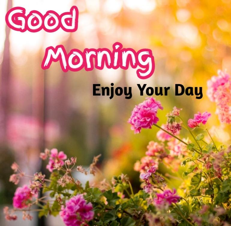 Best Good Morning Images hd12