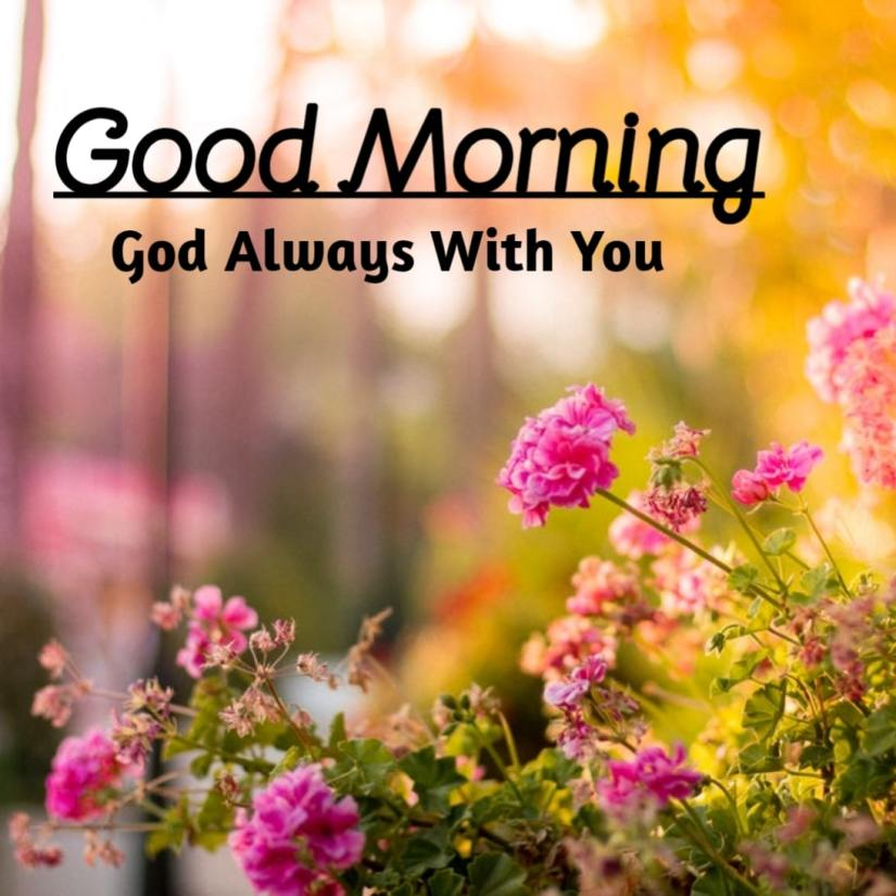 Best Good Morning Images HD Free Download 32