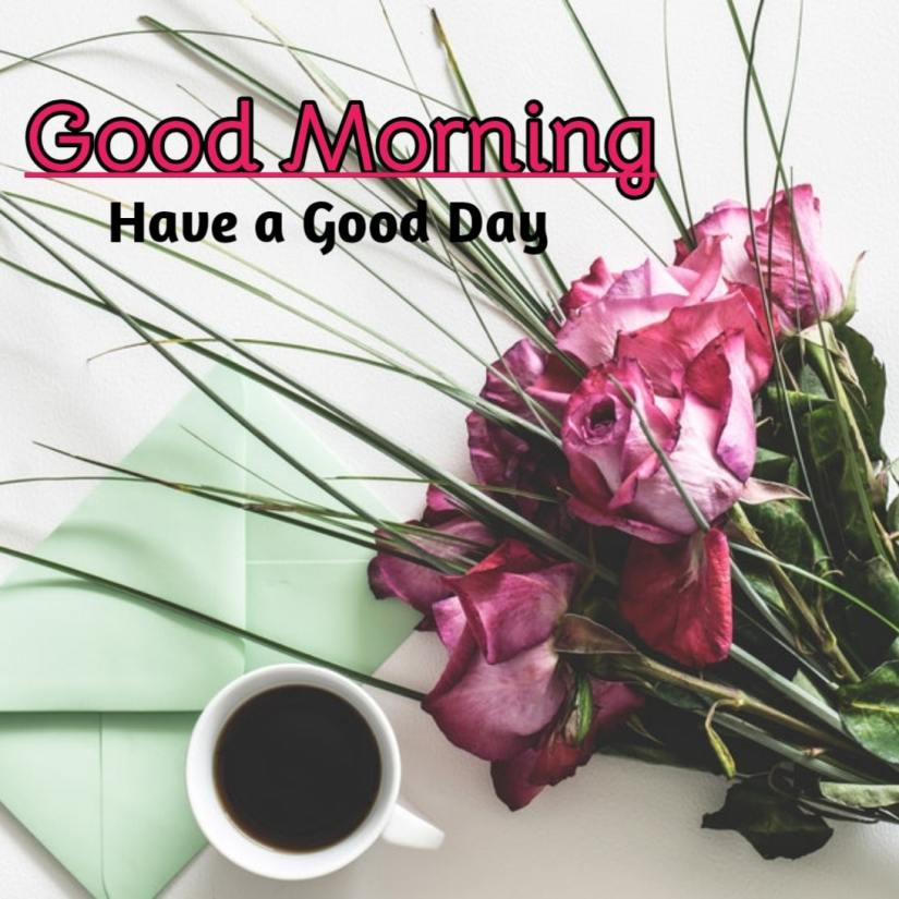Best Good Morning Images HD Free Download 36