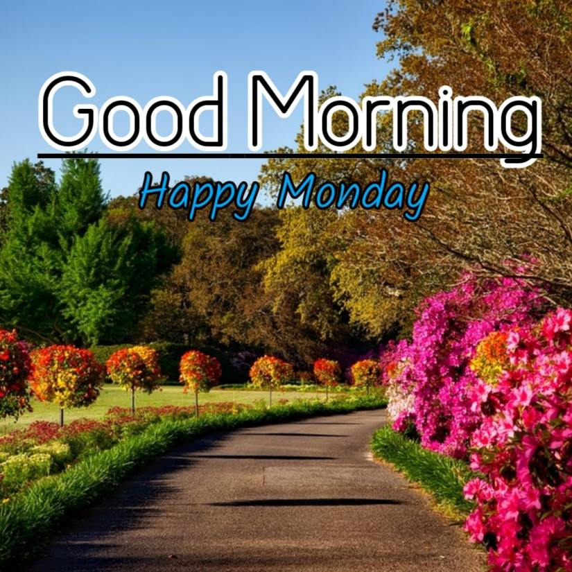 Best Good Morning Images HD Free Download 45