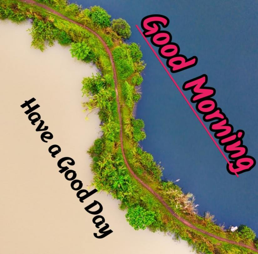 Best Good Morning Images HD Free Download 6