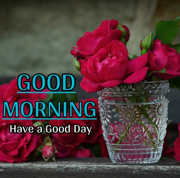 Best Good Morning Images HD Free Download 89
