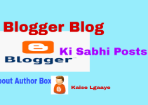 blog ki sabhi posts me about author box lgaaye