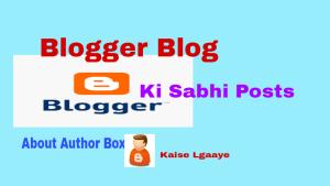 blog ki sabhi posts me about author box lgaaye