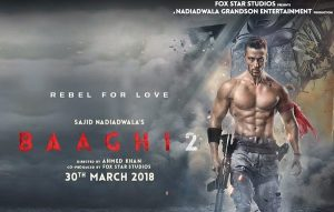 Baaghi 2 Box Office Collection Total