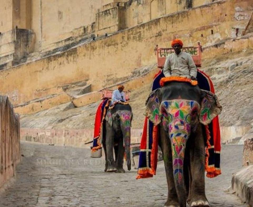 The Royal India Tour