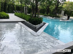 Tribeca swimming pool tiles and pool coping
