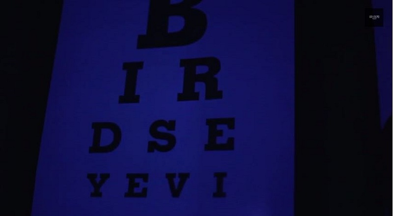 Birdseyeviewvid