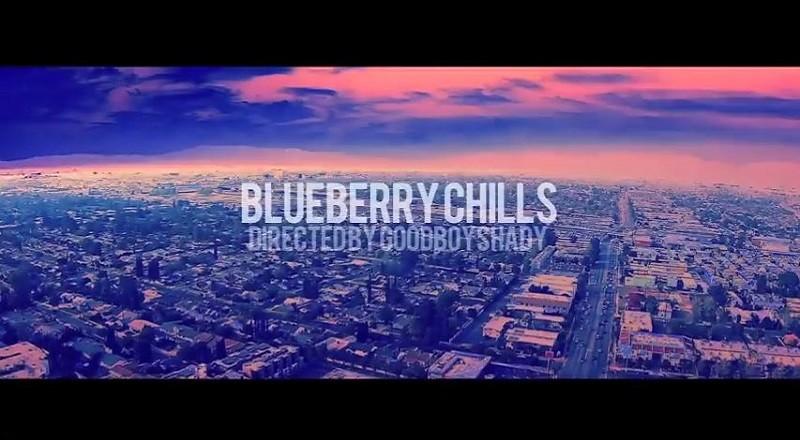 Blueberrychillsvid