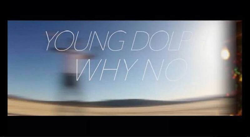 Whynotyoungdolphvid