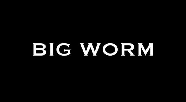 Bigwormvid