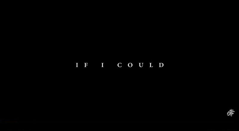 Ificouldvid
