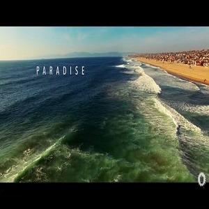 Paradisebennybenassivid