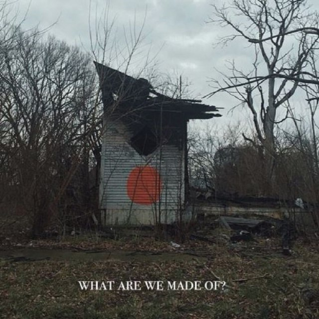 what-are-we-made-of