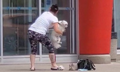Nikki Dika shares a video of a woman, in Niagara Falls, New York, showing out in front of a local store. Apparently, the woman was denied entry into the store, with her dog, so she went on a racist tirade, in front of the building. She repeatedly threatened the employee, threatening to call the police on him, but ran and hid, when the cops actually came... for her.