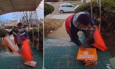 DoorDash delivery driver drops pizza puts back in box