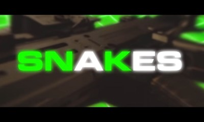 Waka Flocka Flame Snakes music video