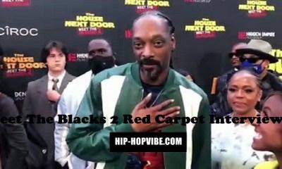 Meet The Blacks 2 red carpet interviews