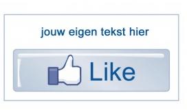 sluitsticker facebook