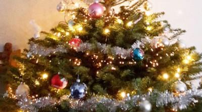 7 tips om je kerstboom langer goed te houden